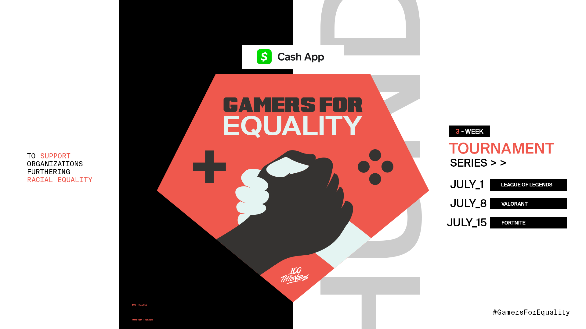 Gamers For Equality 100 Thieves